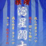 横浜DeNAベイスターズオリジナル刺繍